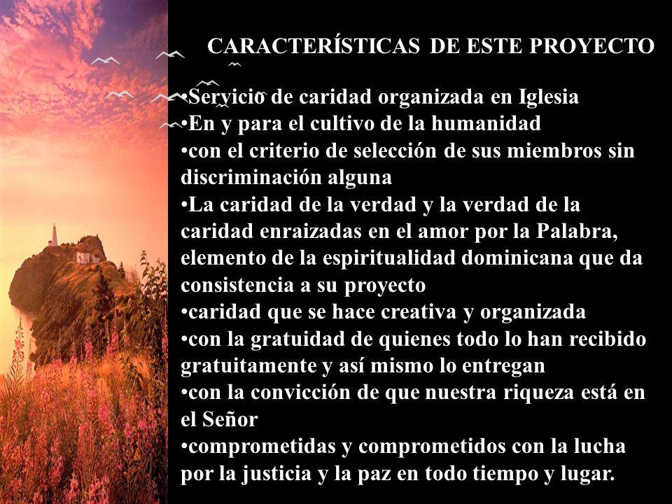 CARACTERÍSTICAS DE ESTE PROYECTO