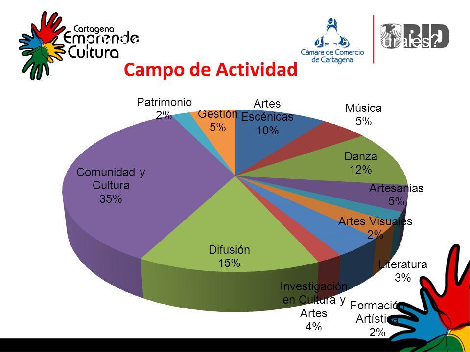 Campo de actividad: ¿Qué actividad realizan las ONG culturales