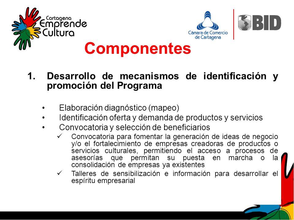 Componentes Desarrollo de mecanismos de identificación y promoción del Programa. Elaboración diagnóstico (mapeo)