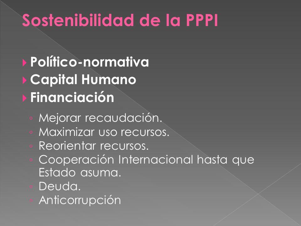 Sostenibilidad de la PPPI