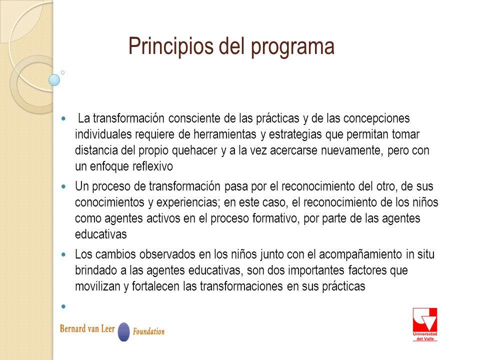 Principios del programa