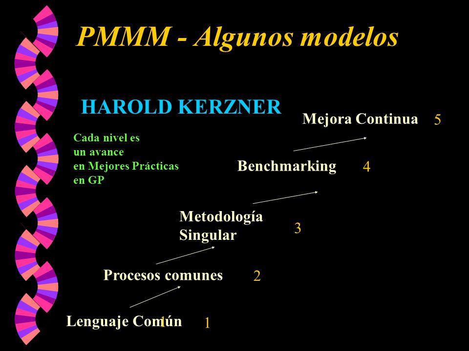 PMMM - Algunos modelos HAROLD KERZNER Mejora Continua 5 Benchmarking 4