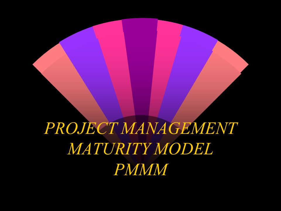 PROJECT MANAGEMENT MATURITY MODEL PMMM