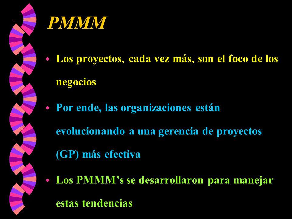 PMMM Los proyectos, cada vez más, son el foco de los negocios