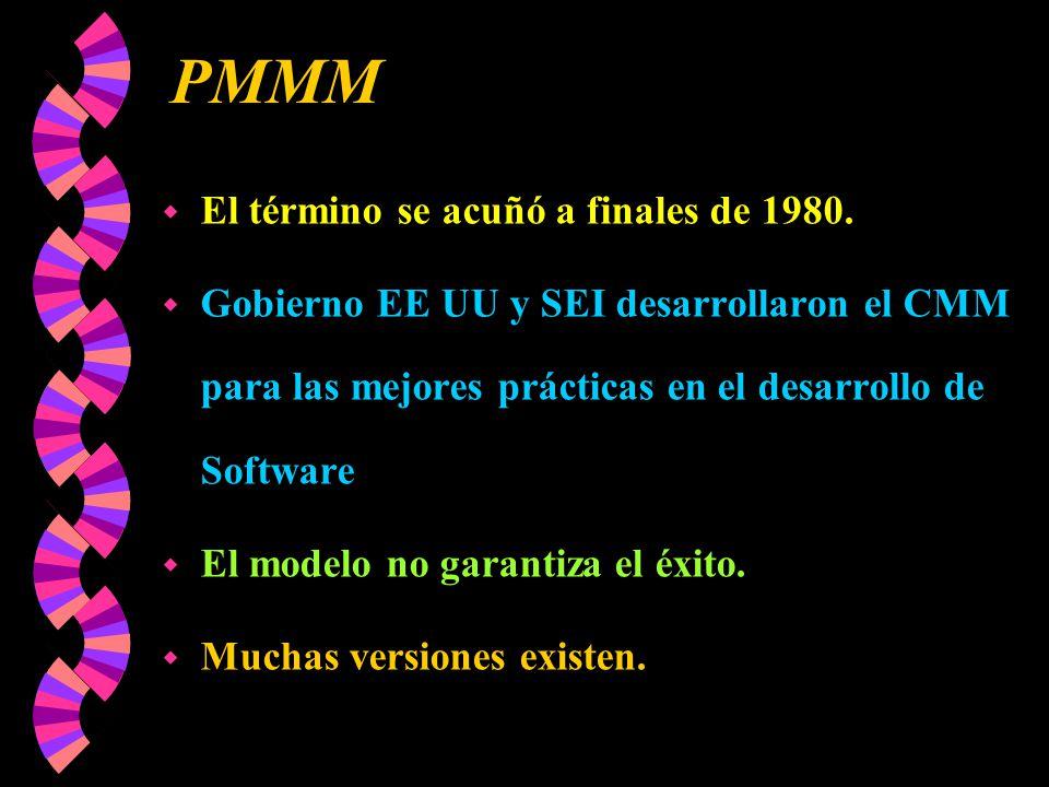 PMMM El término se acuñó a finales de 1980.
