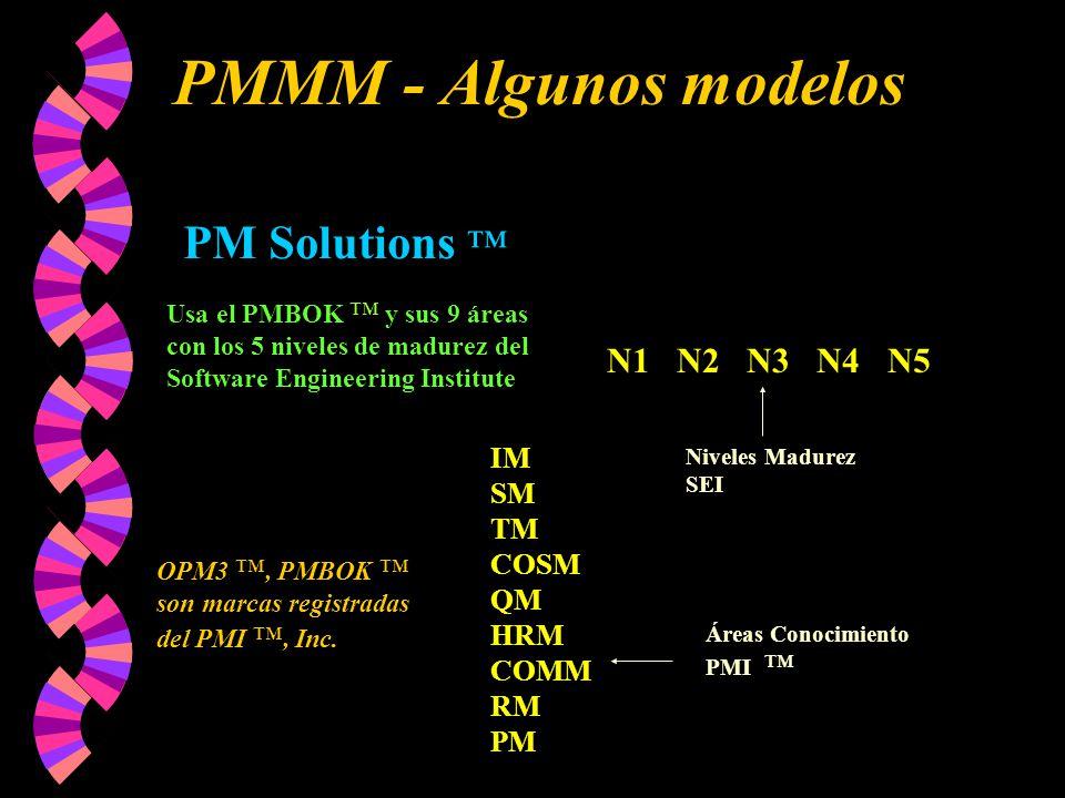 PMMM - Algunos modelos PM Solutions ™ N1 N2 N3 N4 N5 IM SM TM COSM QM
