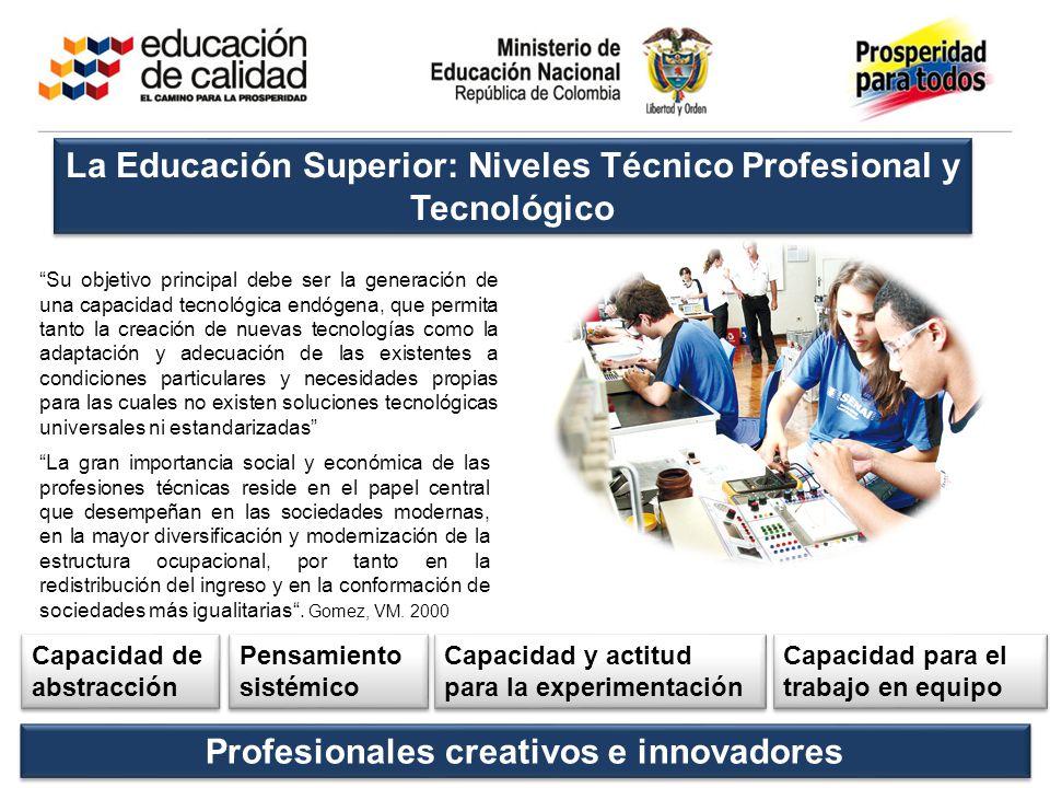 La Educación Superior: Niveles Técnico Profesional y Tecnológico
