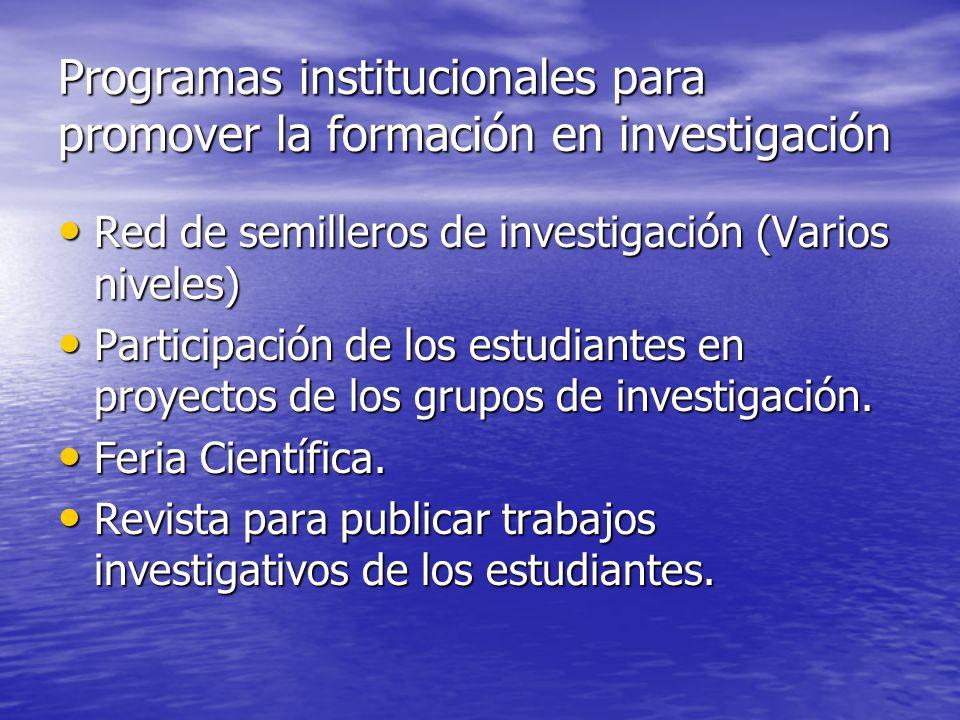 Programas institucionales para promover la formación en investigación
