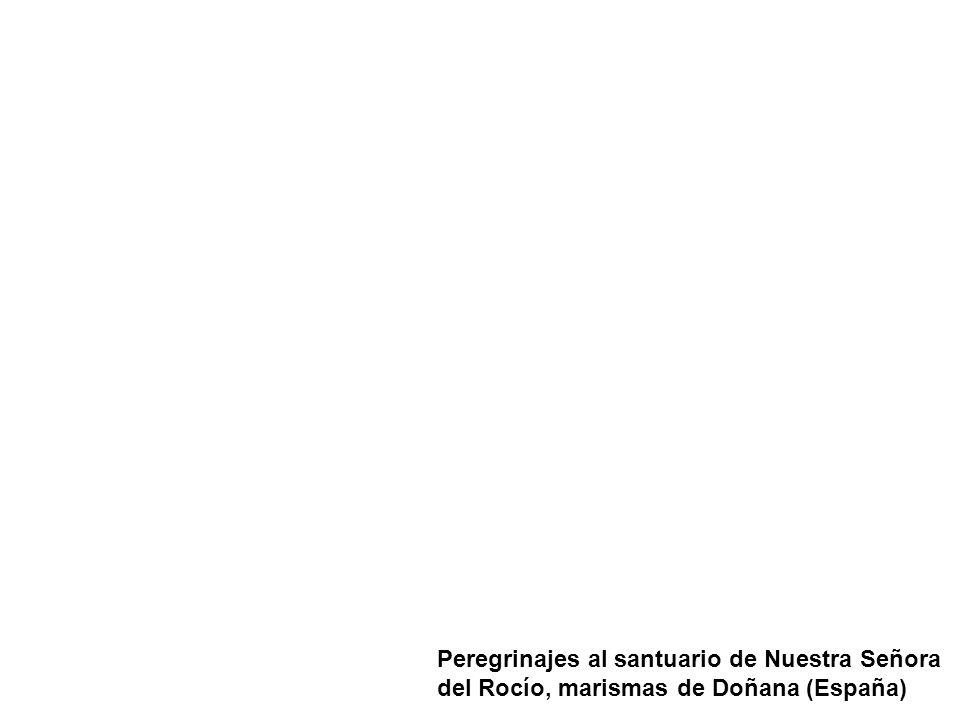 Peregrinajes al santuario de Nuestra Señora del Rocío, marismas de Doñana (España)