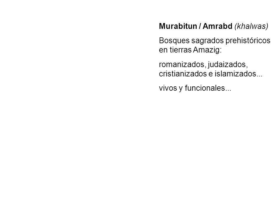 Murabitun / Amrabd (khalwas)