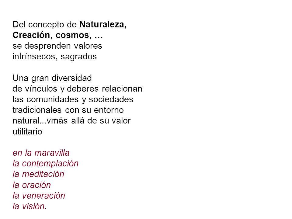 Del concepto de Naturaleza, Creación, cosmos, …