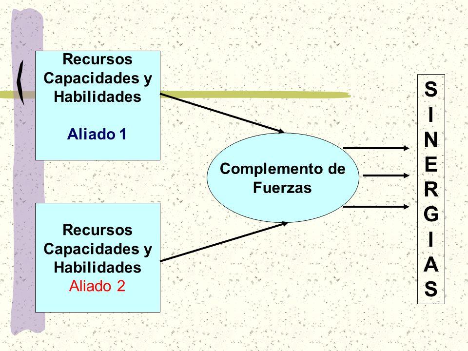 SINERGIAS Recursos Capacidades y Habilidades Aliado 1 Complemento de