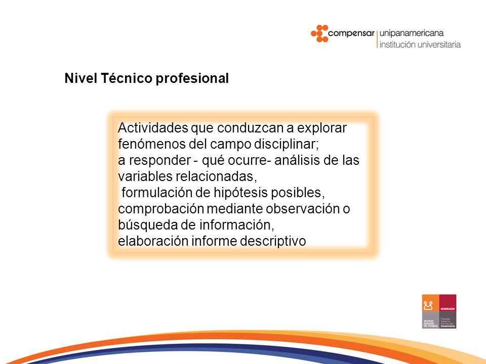 Nivel Técnico profesional