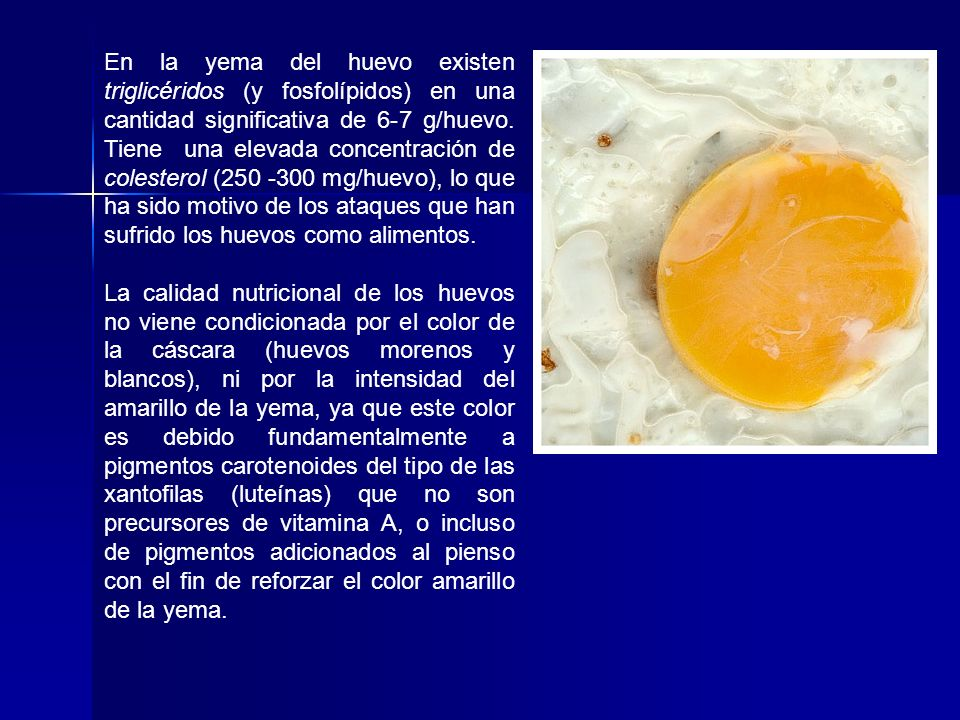 En la yema del huevo existen triglicéridos (y fosfolípidos) en una cantidad significativa de 6-7 g/huevo. Tiene una elevada concentración de colesterol (250 -300 mg/huevo), lo que ha sido motivo de los ataques que han sufrido los huevos como alimentos.