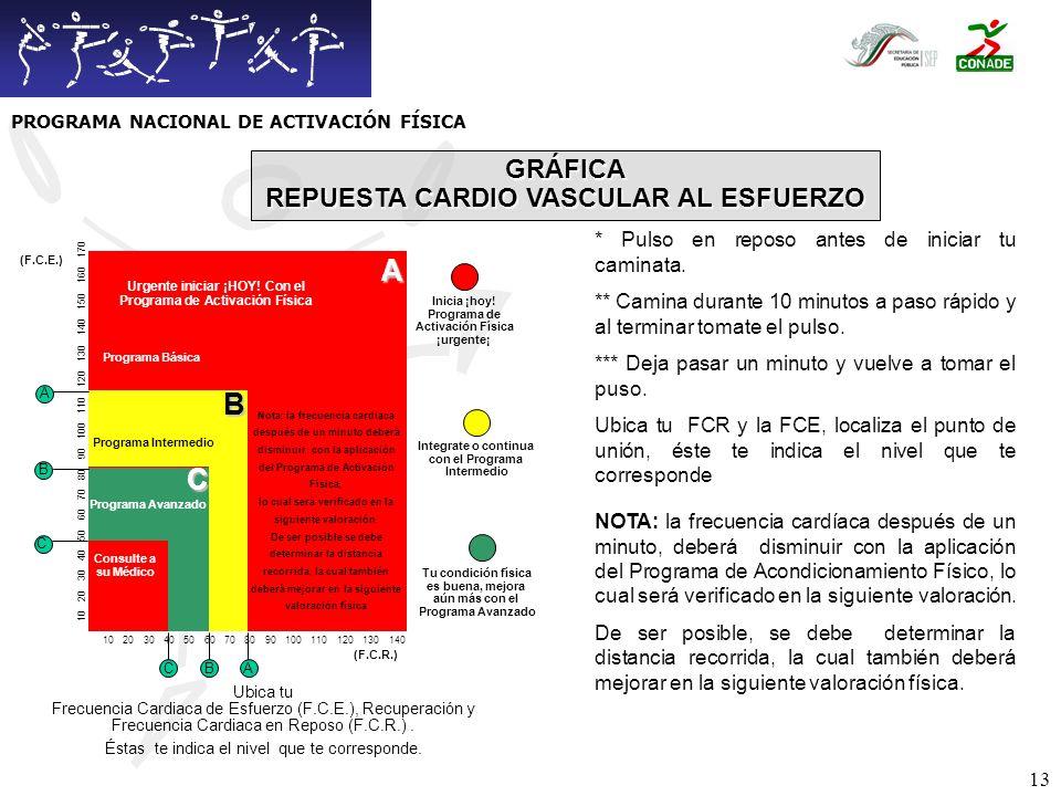 A B C GRÁFICA REPUESTA CARDIO VASCULAR AL ESFUERZO