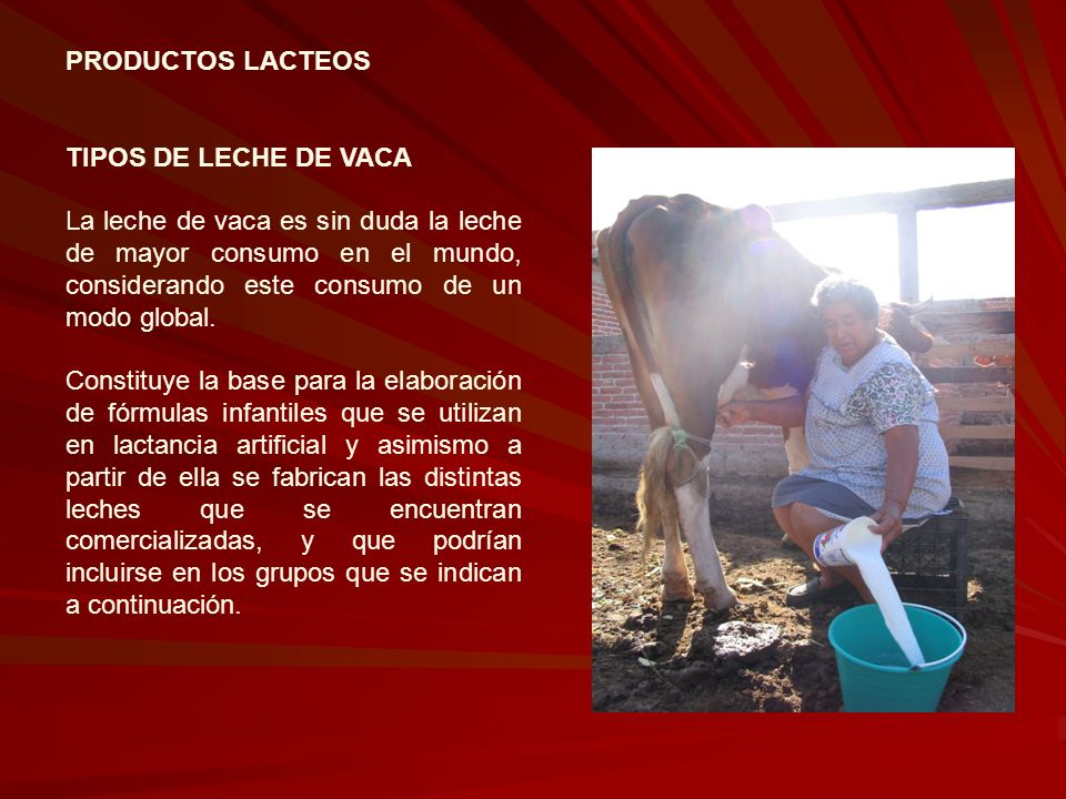 PRODUCTOS LACTEOS TIPOS DE LECHE DE VACA.