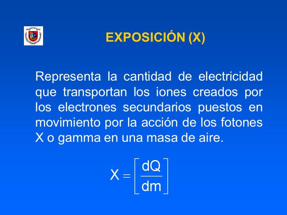 EXPOSICIÓN (X)