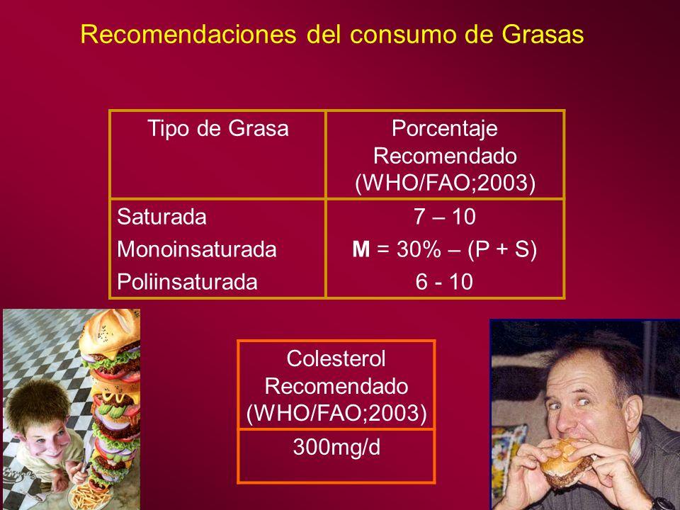 Recomendaciones del consumo de Grasas