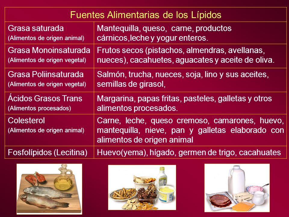 Fuentes Alimentarias de los Lípidos