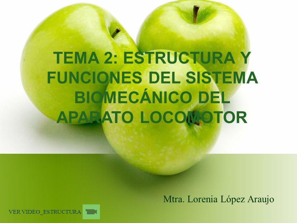 TEMA 2: ESTRUCTURA Y FUNCIONES DEL SISTEMA BIOMECÁNICO DEL APARATO LOCOMOTOR