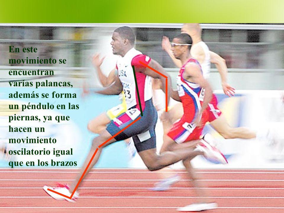 En este movimiento se encuentran varías palancas, además se forma un péndulo en las piernas, ya que hacen un movimiento oscilatorio igual que en los brazos