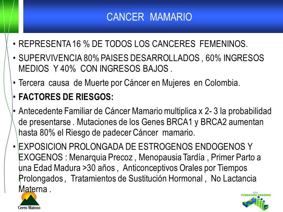 CANCER MAMARIO REPRESENTA 16 % DE TODOS LOS CANCERES FEMENINOS.
