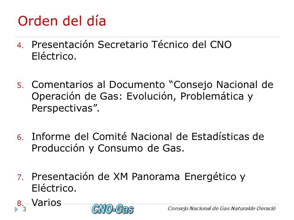 Orden del día Presentación Secretario Técnico del CNO Eléctrico.