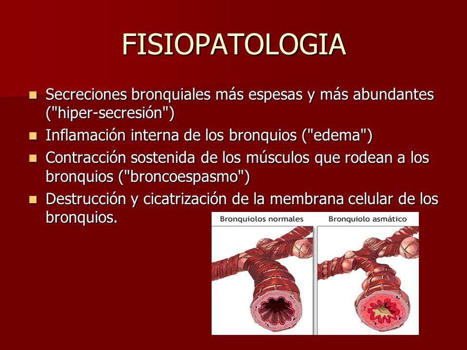 FISIOPATOLOGIA Secreciones bronquiales más espesas y más abundantes ( hiper-secresión ) Inflamación interna de los bronquios ( edema )