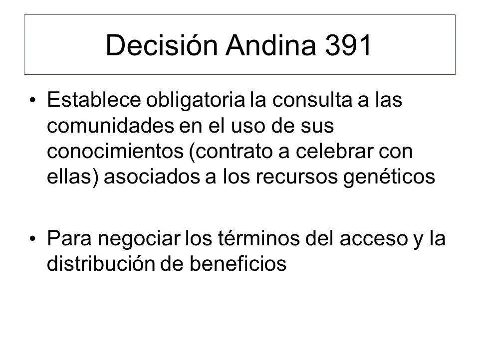 Decisión Andina 391