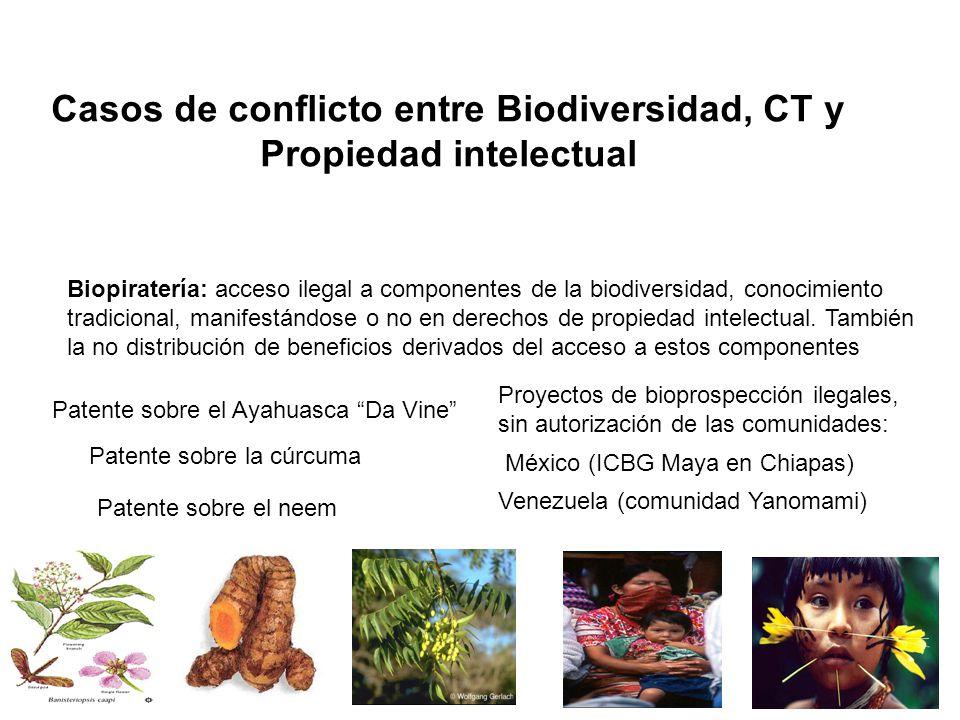 Casos de conflicto entre Biodiversidad, CT y Propiedad intelectual