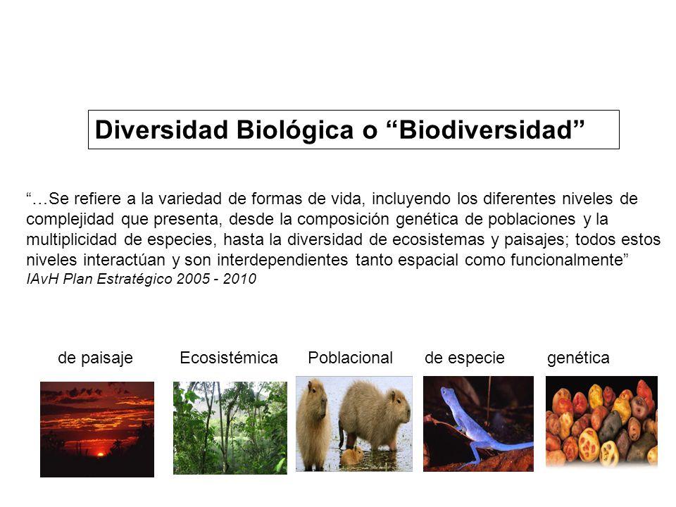 Diversidad Biológica o Biodiversidad