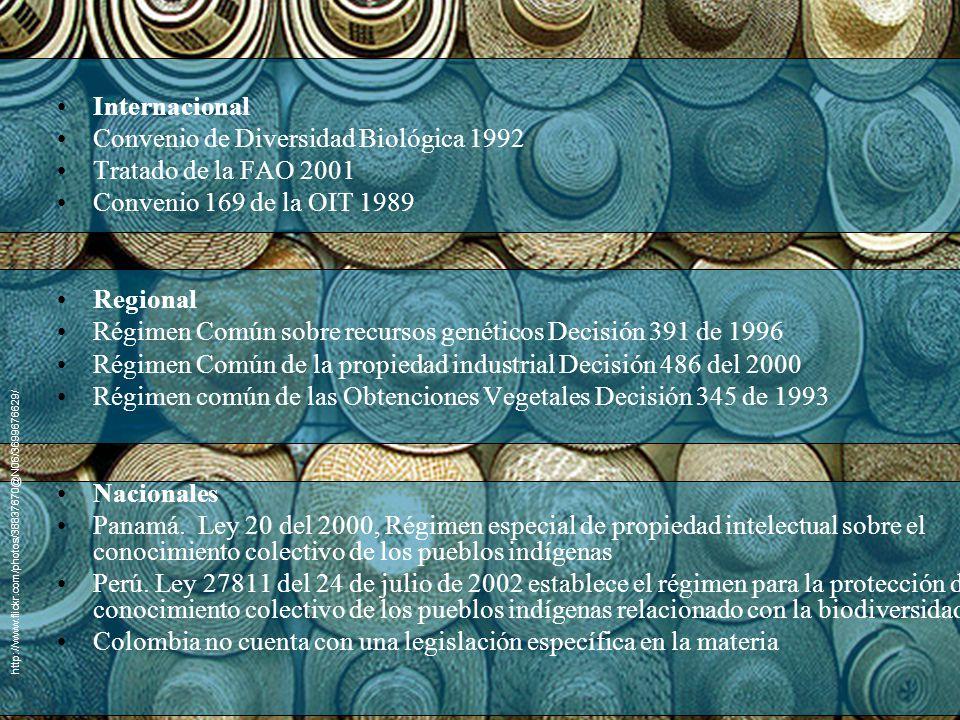 Convenio de Diversidad Biológica 1992 Tratado de la FAO 2001