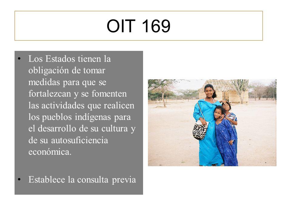 OIT 169