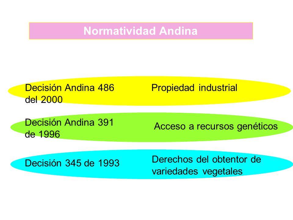 Normatividad Andina Decisión Andina 486 del 2000 Propiedad industrial