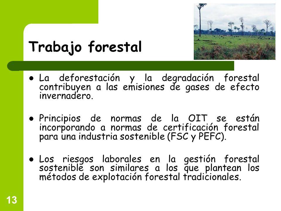 Trabajo forestal La deforestación y la degradación forestal contribuyen a las emisiones de gases de efecto invernadero.