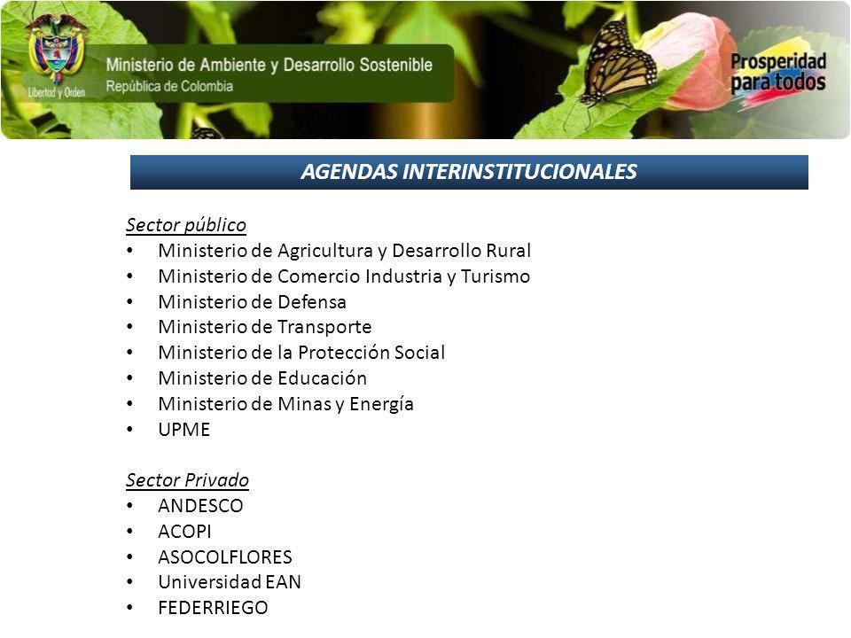 AGENDAS INTERINSTITUCIONALES