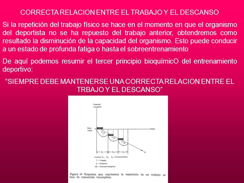 CORRECTA RELACION ENTRE EL TRABAJO Y EL DESCANSO