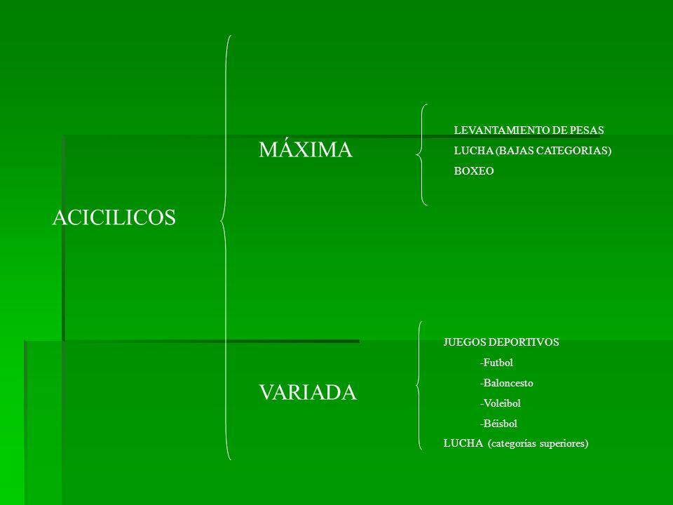 MÁXIMA ACICILICOS VARIADA LEVANTAMIENTO DE PESAS