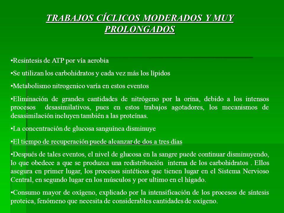 TRABAJOS CÍCLICOS MODERADOS Y MUY PROLONGADOS