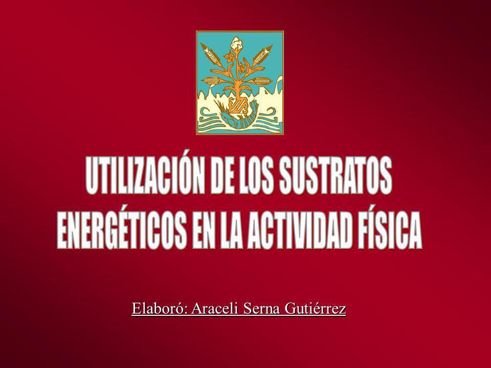 UTILIZACIÓN DE LOS SUSTRATOS ENERGÉTICOS EN LA ACTIVIDAD FÍSICA