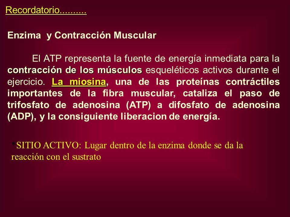 Recordatorio.......... Enzima y Contracción Muscular.