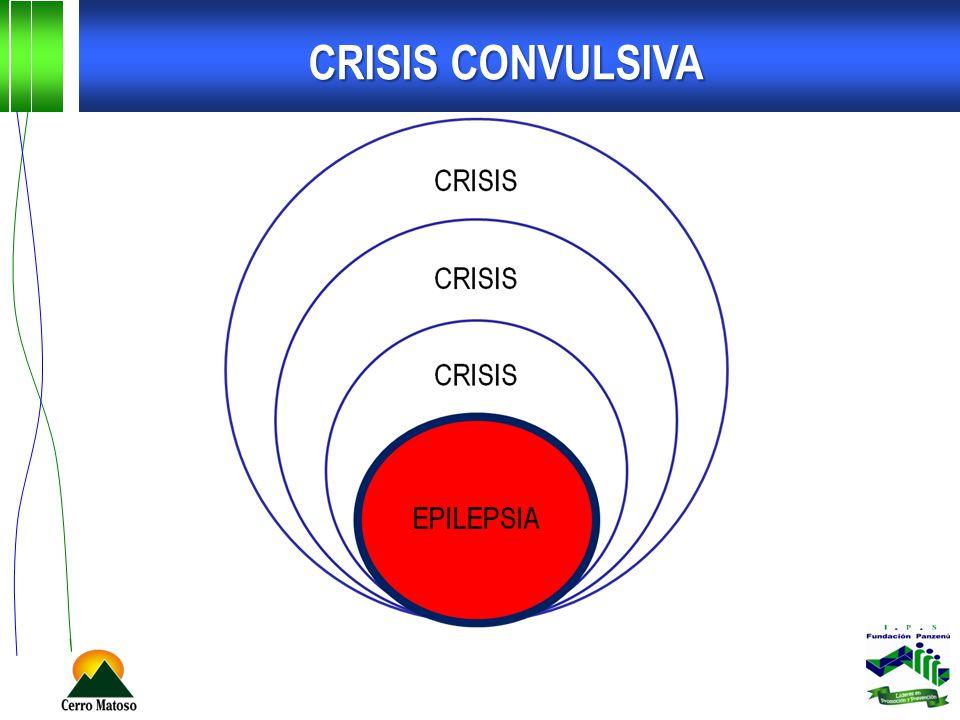 CRISIS CONVULSIVA