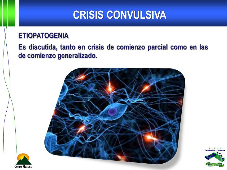 CRISIS CONVULSIVA ETIOPATOGENIA