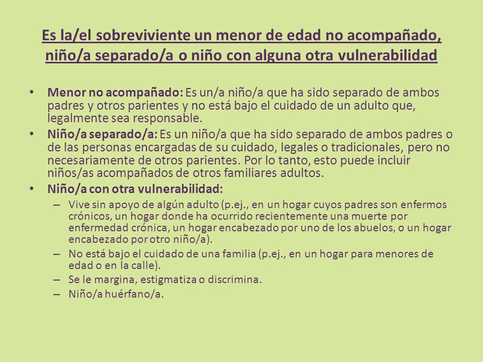 Es la/el sobreviviente un menor de edad no acompañado, niño/a separado/a o niño con alguna otra vulnerabilidad