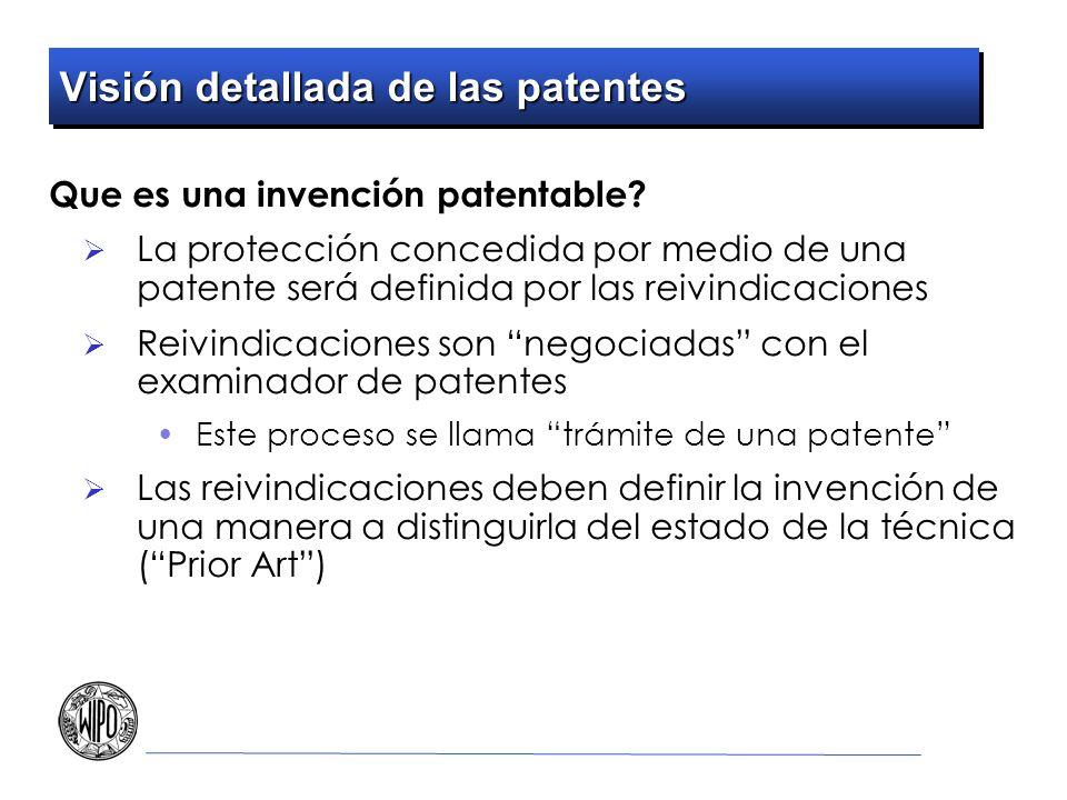 Visión detallada de las patentes