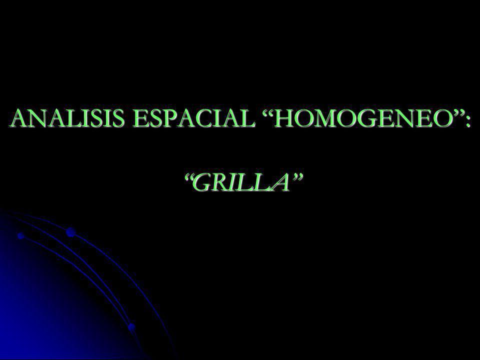 ANALISIS ESPACIAL HOMOGENEO : GRILLA