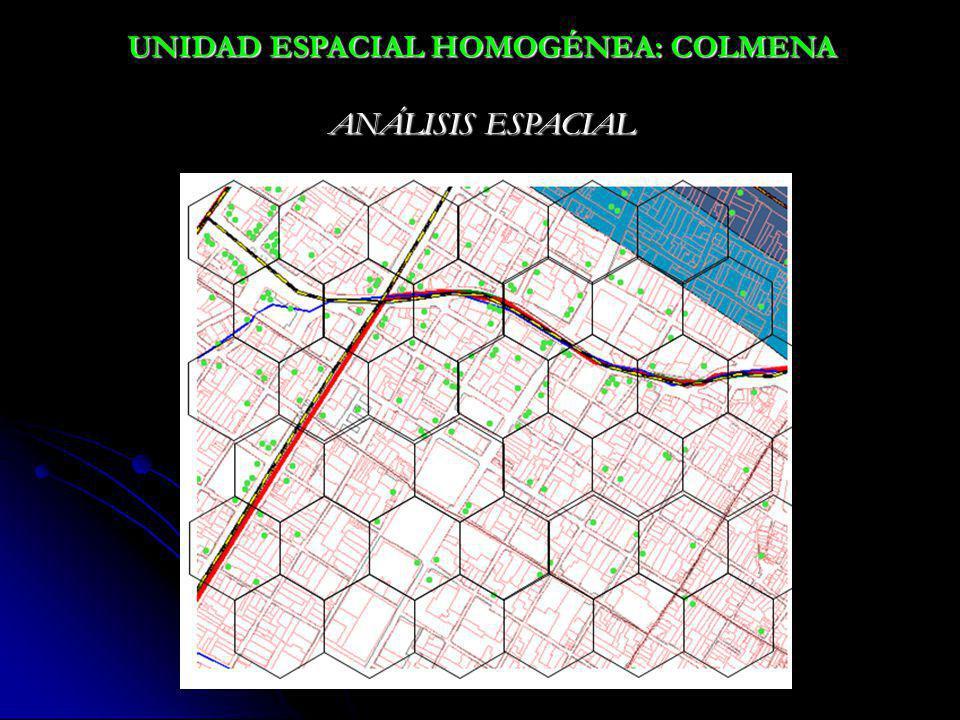 UNIDAD ESPACIAL HOMOGÉNEA: COLMENA