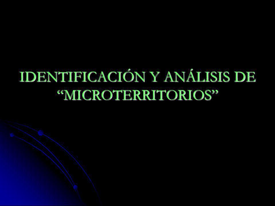 IDENTIFICACIÓN Y ANÁLISIS DE MICROTERRITORIOS