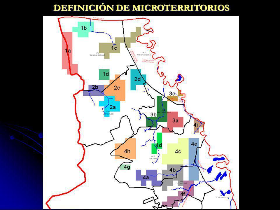 DEFINICIÓN DE MICROTERRITORIOS