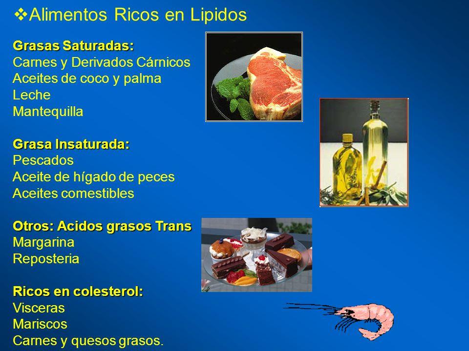 Alimentos Ricos en Lipidos